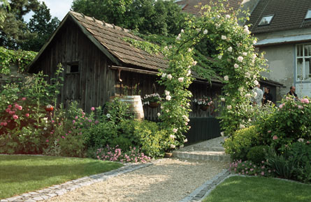 cottagegarden1.jpg
